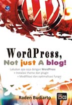 Wordpress, not just a blog!